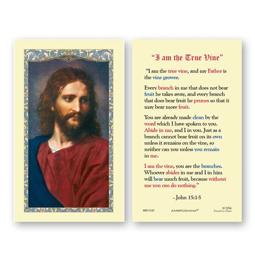 Head of Christ (10 Commandments of God) Holy Card