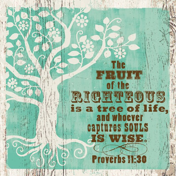 Nightlight Insert - Tree Proverbs 11:30