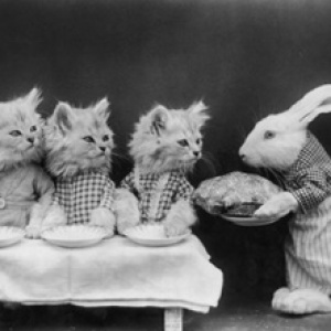 A rabbit serves a meal to three kittens (Harry Whittier Frees, c1870)