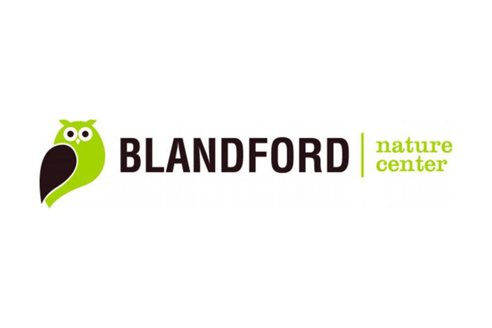 Dnblandford2