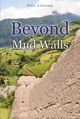 Beyond Mud Walls