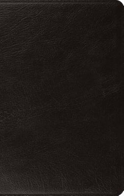 ESV Large Print Thinline Bible (Black)