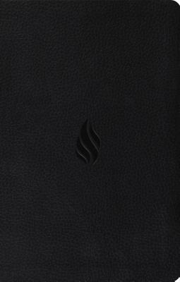Premium Gift Bible-ESV-Flame Design