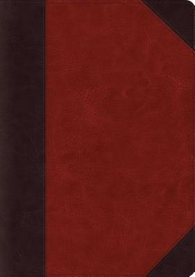 ESV Systematic Theology Study Bible (Trutone, Brown)