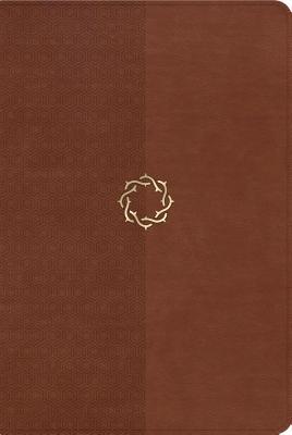 Essential Teen Study Bible-NKJV
