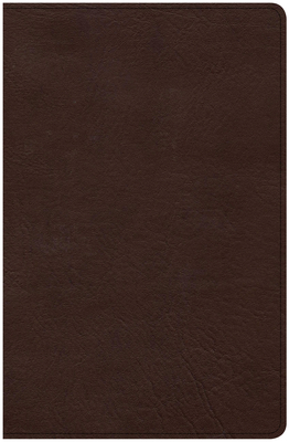 CSB Ultrathin Bible, Brown Leathertouch