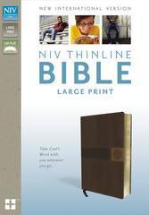 NIV THINLINE BIBLE LARGE PRINT
