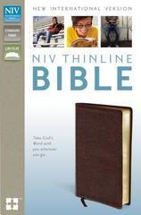 NIV THINLINE BIBLE STANDARD PRINT BURGENDY