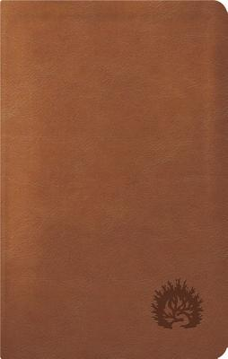 ESV Reformation Study Bible, Condensed Edition - Light Brown, Leather-Like