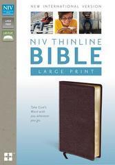 NIV THINLINE BIBLE LARGE PRINT BURGUNDY