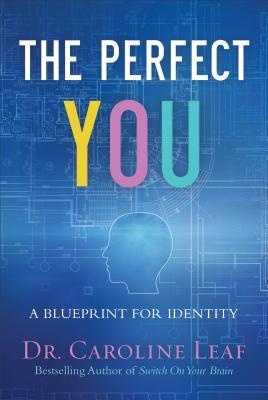 The Perfect You Curriculum Kit: A Blueprint for Identity