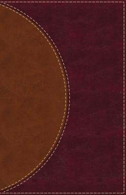 Amplified Reading Bible, Imitation Leather, Brown, Indexed: A Paragraph-Style Amplified Bible for a Smoother Reading Experience