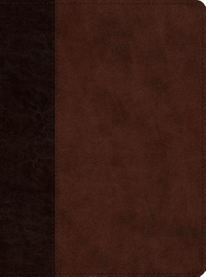 ESV Proverbs: Daily Wisdom (Trutone, Brown/Walnut, Timeless Design)