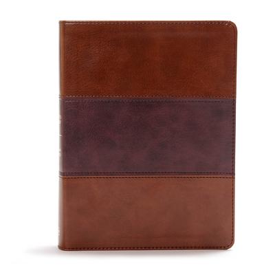 CSB Apologetics Study Bible, Mahogany Leathertouch