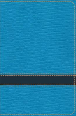 KJV Study Bible for Boys Ocean/Navy Leathertouch