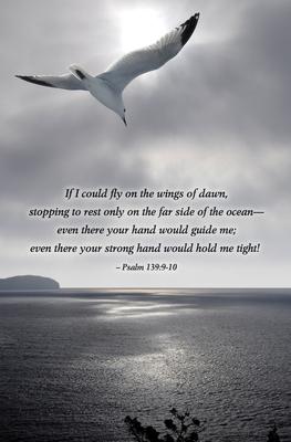 Seagull Scripture Series Bulletin (Pkg of 50)