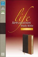 NIV LIFE APPLICATION BIBLE LARGE PRINT INDEXED CHOCOLATE/TAN