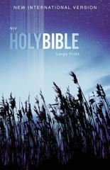 NIV HOLY BIBLE LARGE PRINT BLUE PAPERBACK