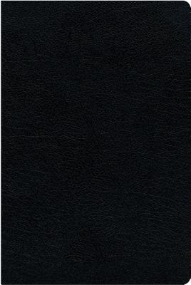 NIV, Biblical Theology Study Bible, Bonded Leather, Black, Indexed, Comfort Print