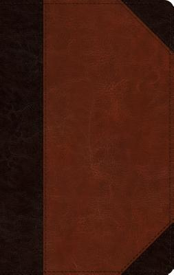 ESV Single Column Thinline Bible (Trutone, Brown/Cordovan, Portfolio Design)