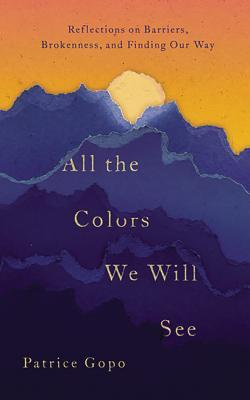 All the Colors We Will See: Reflections on Barriers, Brokenness, and Finding Our Way