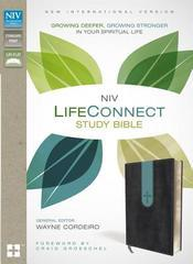 NIV Life Connect Study Bible Gray/Dusty Blue