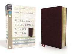 NIV Biblical Theology Study Bible Burgundy