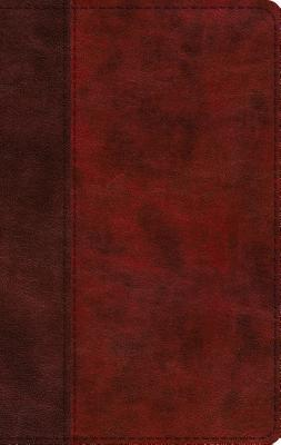 ESV Large Print Thinline Bible (Trutone, Burgundy/Red, Timeless Design)