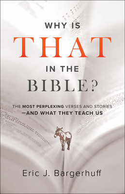 Why Is That in the Bible?: The Most Perplexing Verses and Stories--And What They Teach Us