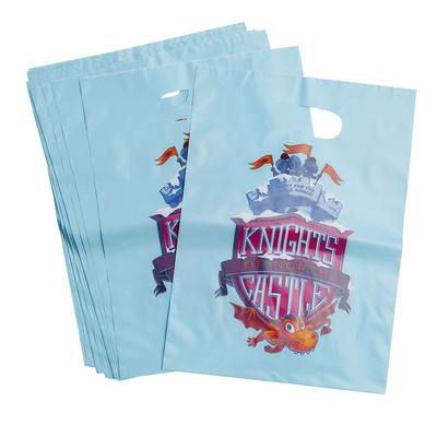 Vacation Bible School (Vbs) 2020 Knights of North Castle Vbs LOGO Bags (Pkg of 24): Quest for the King's Armor