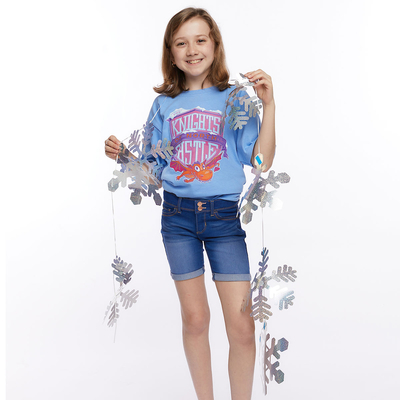 Vacation Bible School (Vbs) 2020 Knights of North Castle Holographic Snowflake Garland: Quest for the King's Armor