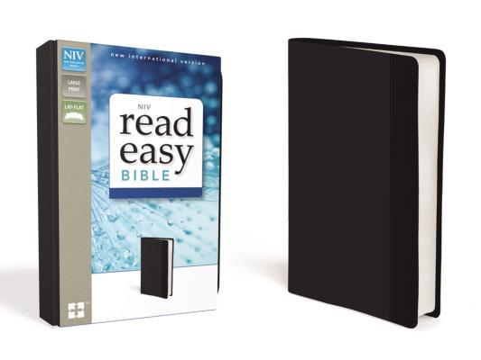Readeasy Bible-NIV