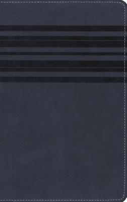 Large Print Bible-NIRV