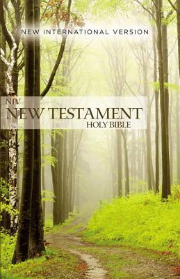 Outreach New Testament-NIV