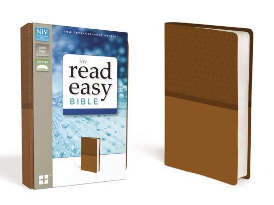 NIV Readeasy Bible