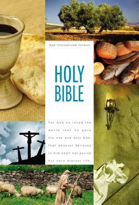 Textbook Bible-NIV