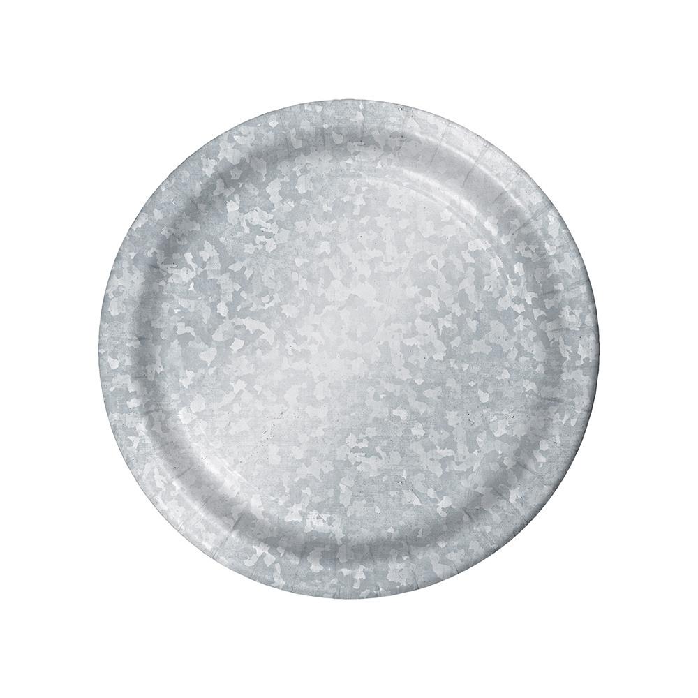 Galvanized Dinner Plates