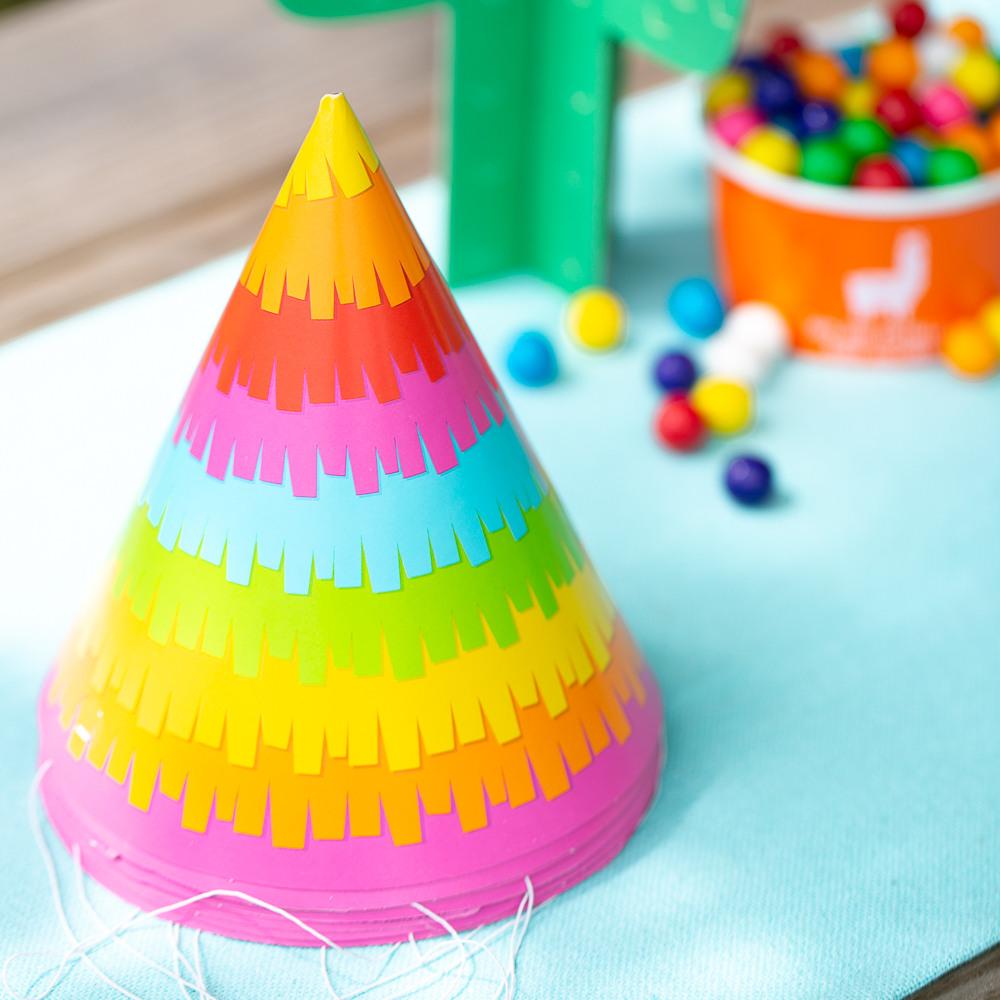 Fiesta Fun Adult Party Hat 11475