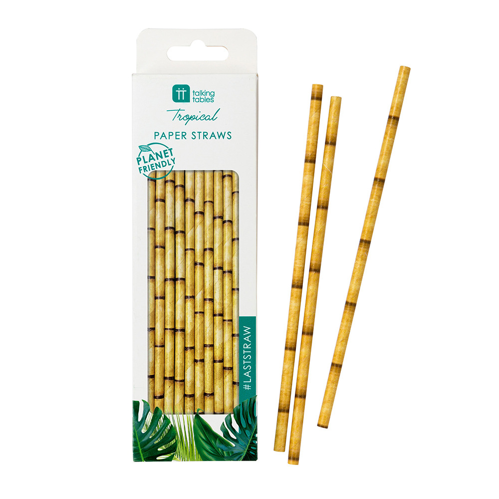 Fiesta Bamboo Paper Straws packaging