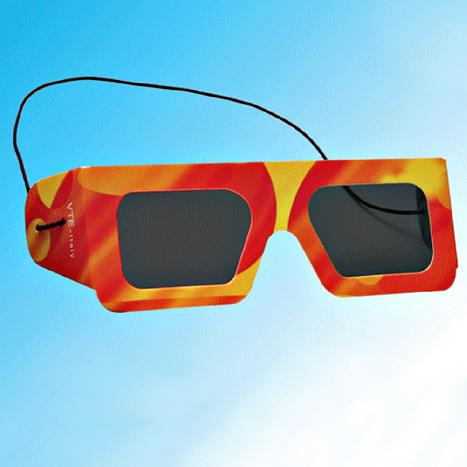 Polarized Goggle (VTE)