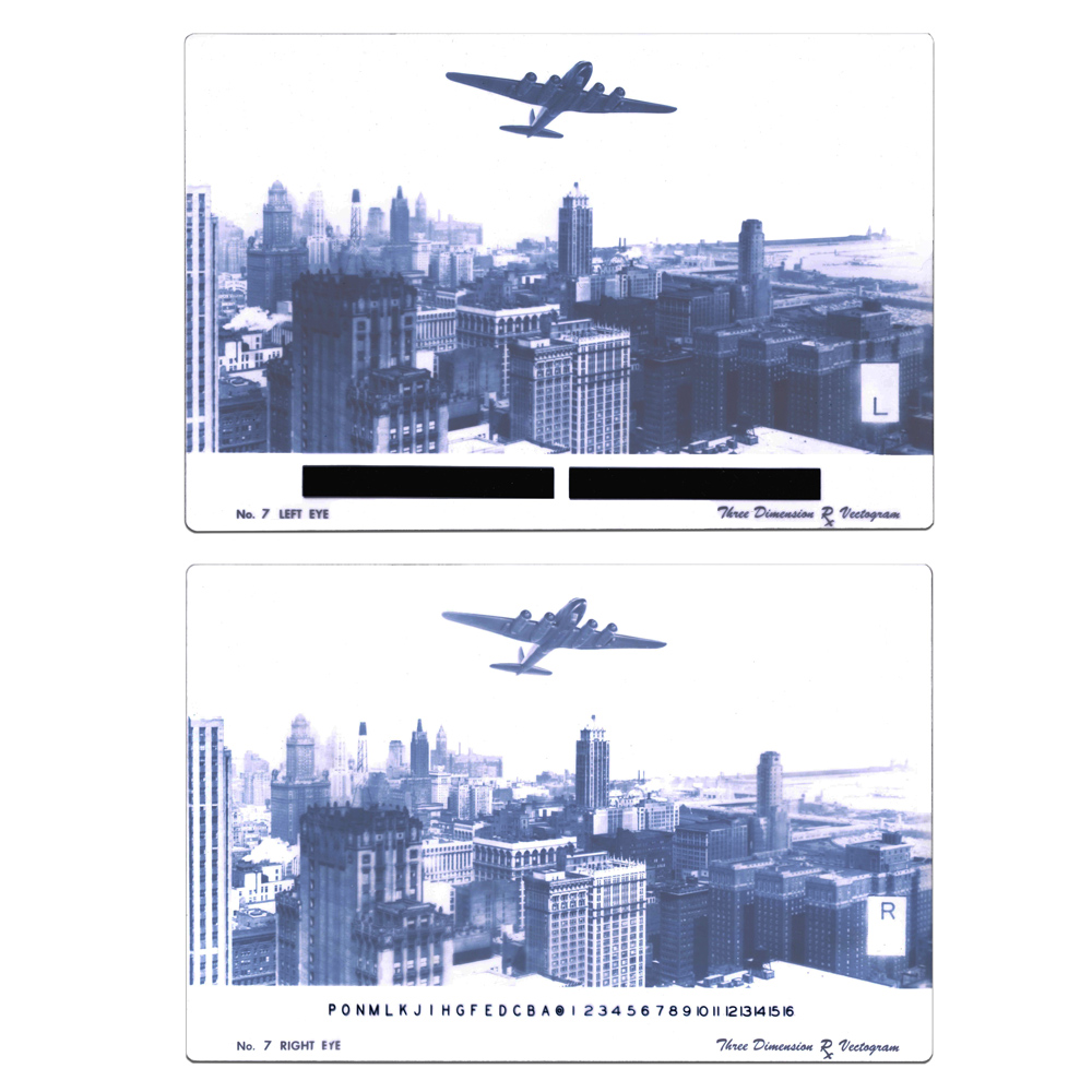 Variable Vectogram (Chicago Skyline Vectogram)