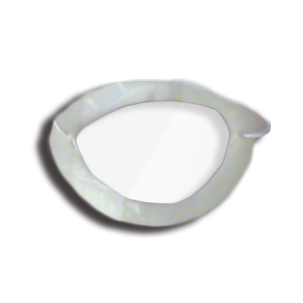 Eye Shields with Foam (Large) - Color: Clear (Pkg. of 6)