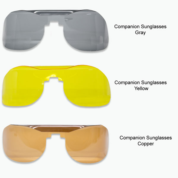Companions™ Slip-In Sunglasses