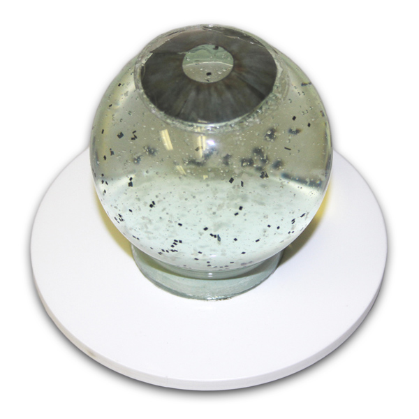 Vitreous Floater Model