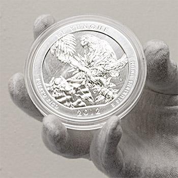 2012 RAW El Yunque - 5oz Silver America The Beautiful 5oz Silver Quarter .999 Silver - Image