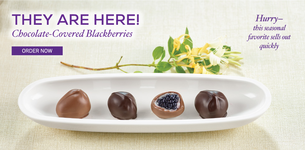 Chocolate Covered Blackberries