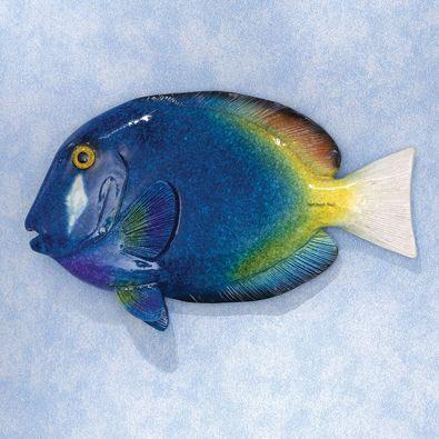 Blue Tang Tropical Fish Wall Art