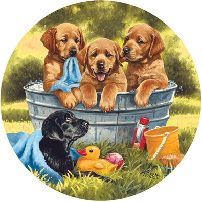 Squeaky Clean 300 Large Piece Round Jigsaw Puzzle