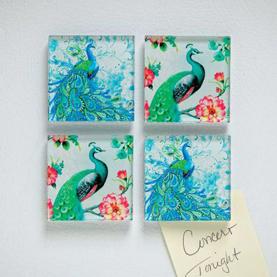 Glass Peacock Magnets