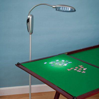 Adjustable Anywhere LED Floor Lamp